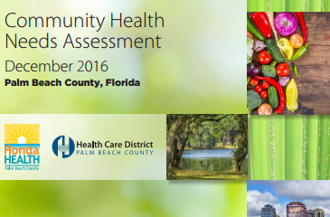 Community Health Needs Assessment 2016 green cover displays a close up image of blades of grass.